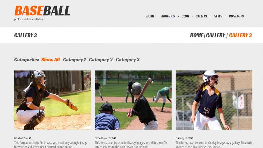 baseball theme demo gallery page