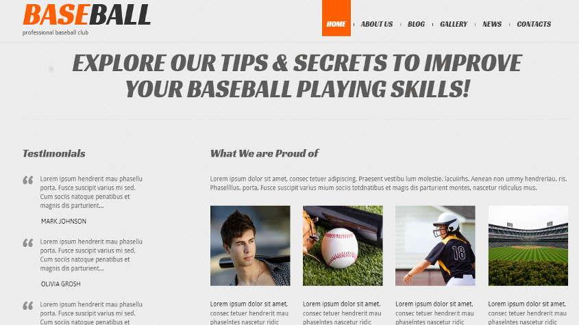 baseball theme demo homepage bottom section