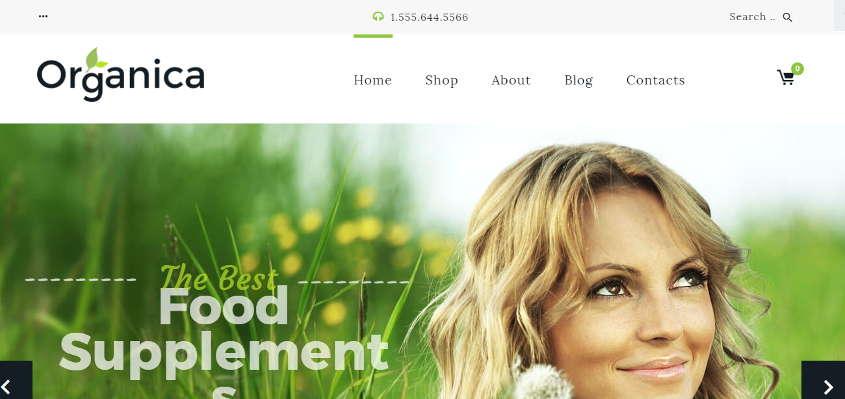 organica best woocommerce themes