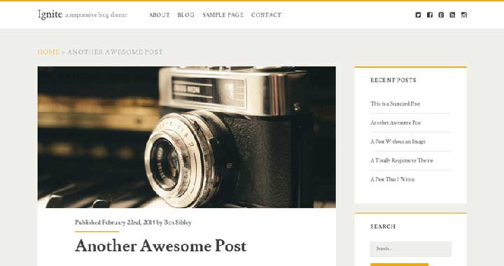 Ignite Free WP Theme