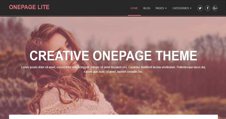 OnePage Lite Free WP Theme