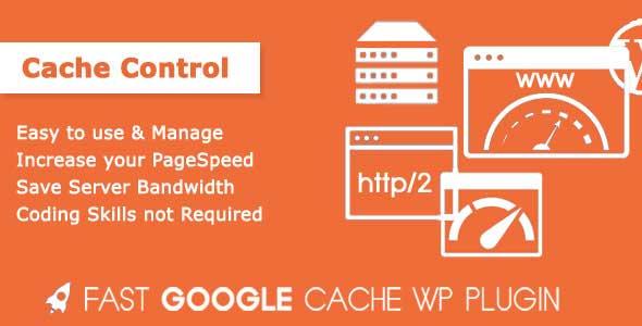 Fast Google Cache