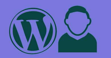 WordPress Custom Avatar Plugins