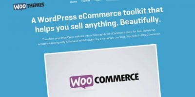 How to Setup a WordPress eCommerce Website Using WooCommerce Plugin?