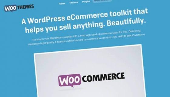 How to Setup a WordPress eCommerce Website Using WooCommerce Plugin?