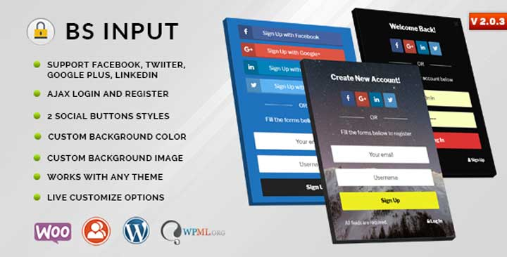 BS Input WordPress Social Login Plugin