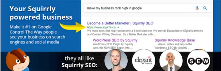 SEO Squirly WordPress Plugin