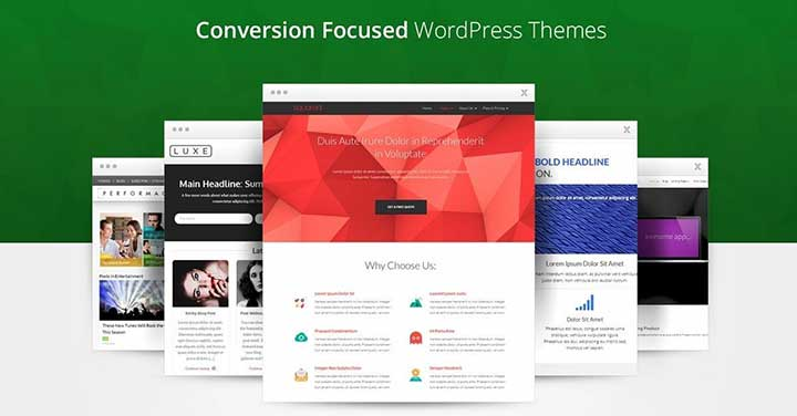 Thrive WordPress Black Themes