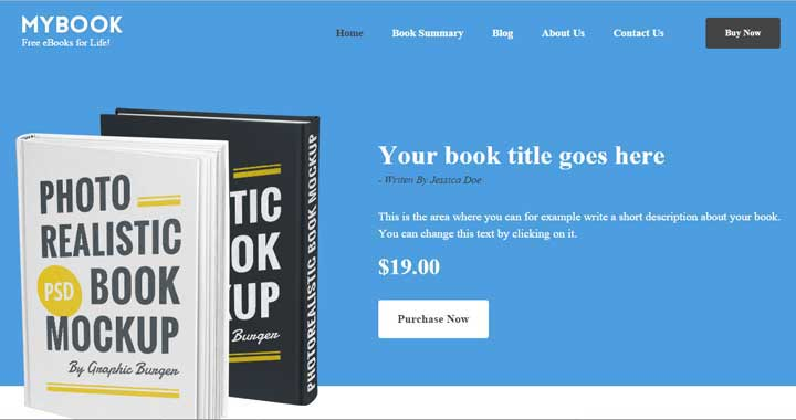 MyBook WordPress Theme for publishers