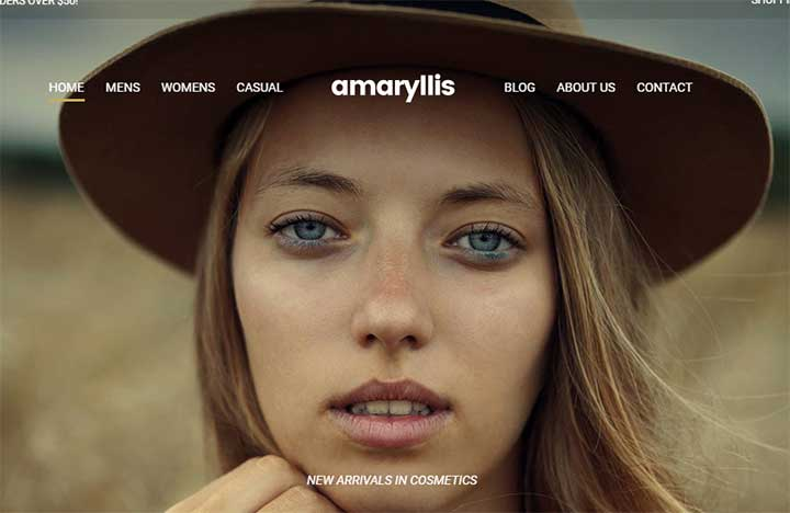 Amaryllis Model WP Theme