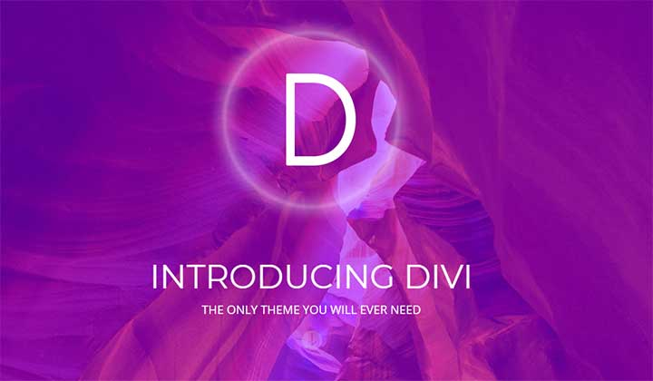 Divi WordPress Theme for Models