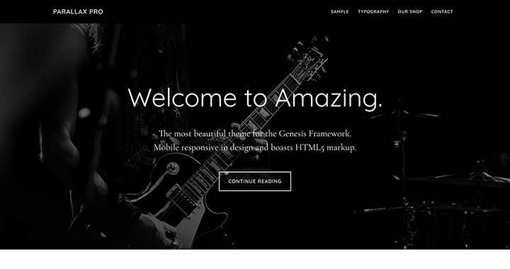 Parallax WP Theme for Models