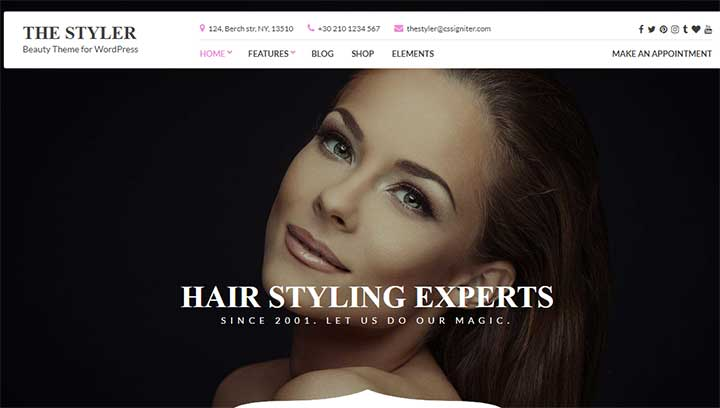 Styler Model WP Theme