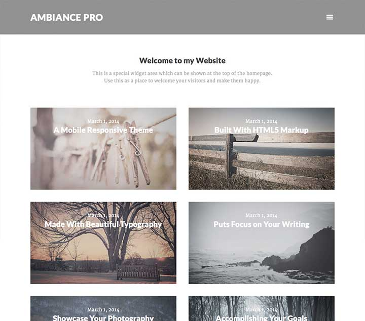 Ambiance Pro WordPress Affiliate Theme