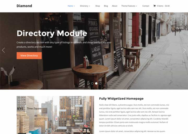 Diamond directory listing website template