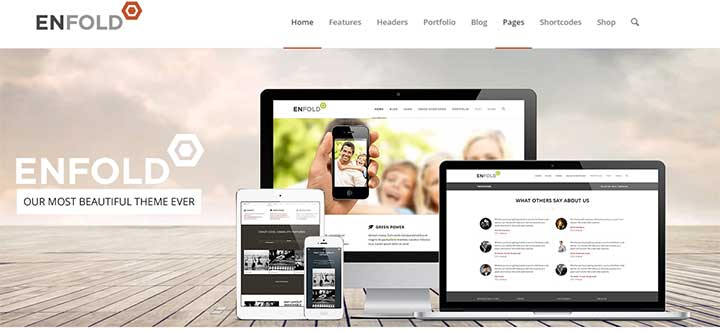 Enfold WordPress insurance theme