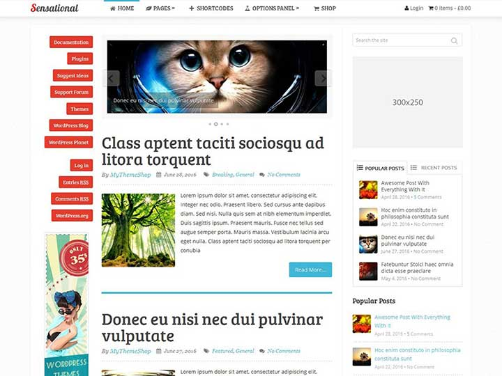 Sensational HTML5 WordPress Theme