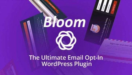 Bloom WordPress Plugin Review