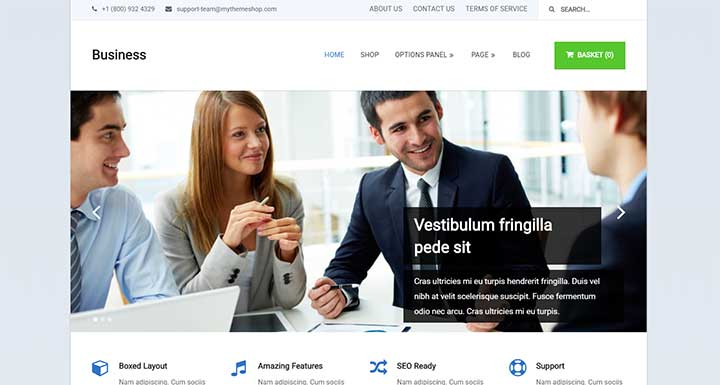 Business insurance agency wordpress themes
