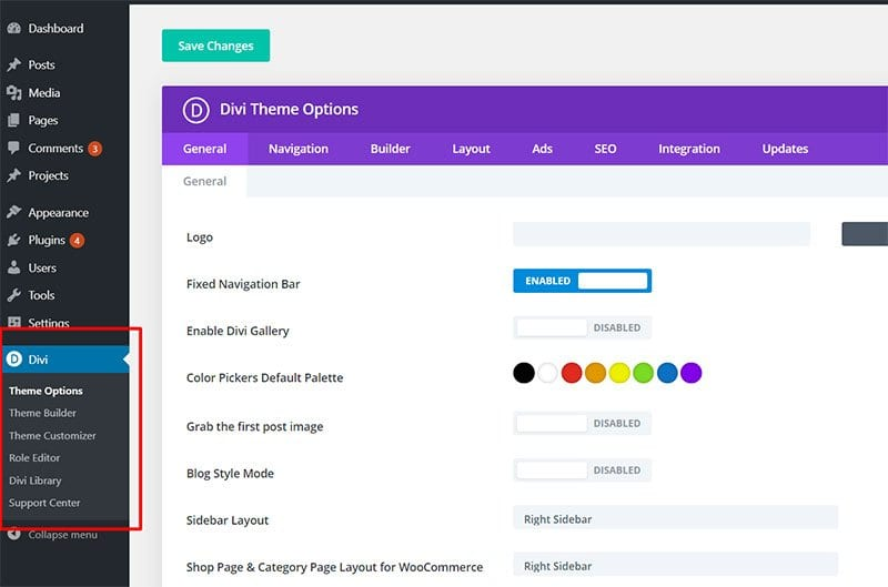 Divi-Theme-Options-latest