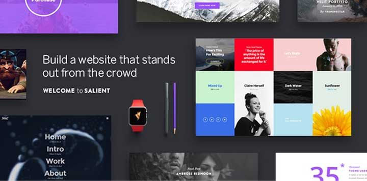 Salient WordPress Multi-Purpose Theme