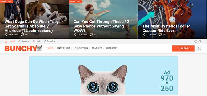 Bunchy Viral WordPress Theme
