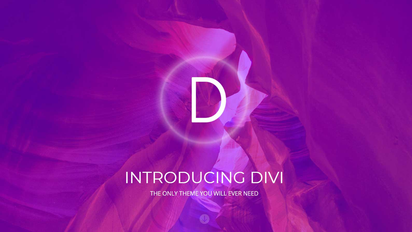 Divi WordPress Transport themes