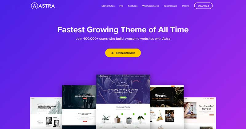 Astra SEO Friendly WordPress Theme