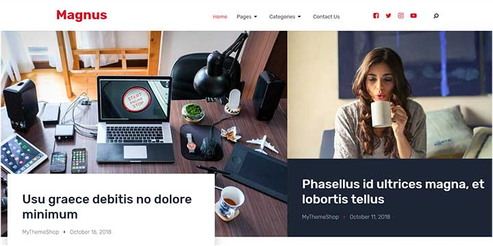 Magnus Fastest WordPress Theme