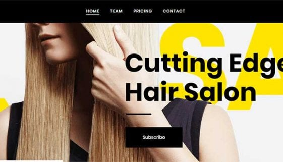 Hair Salon WordPress Themes