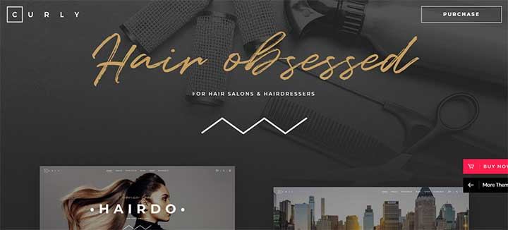 Curly Stylish Theme for Hairdressers and Hair Salons