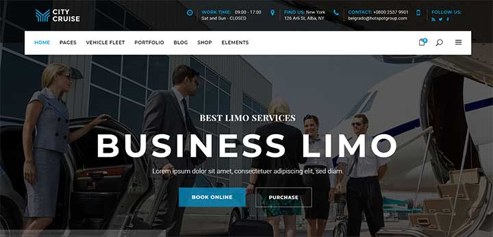 Limousine and Car Rental Theme