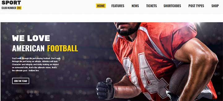Sports Club WP theme for Games