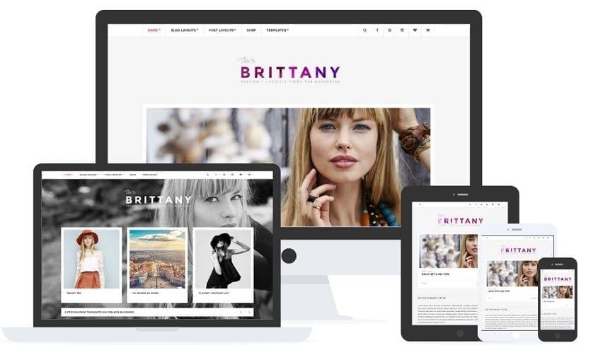 Brittany wordpress theme by cssigniter