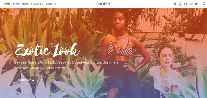 Shoppe WordPress Theme