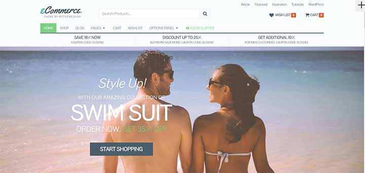 eCommerce Dropshipping WordPress Themes