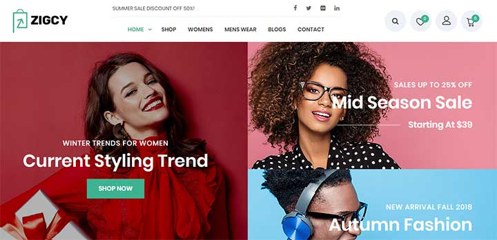 Zigcy WordPress Dropshipping Themes