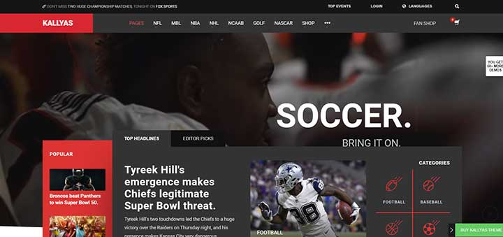 Kallyas WordPress Soccer Themes