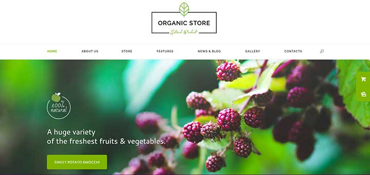 Organic Store Eco Products Shop WordPress Theme