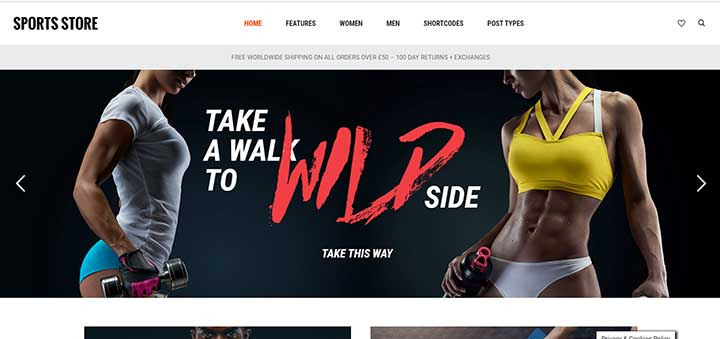 WordPress sports themes