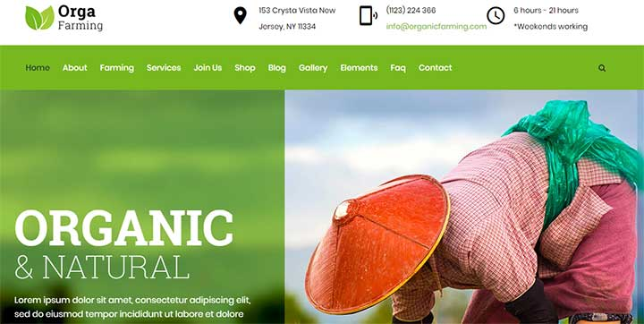 Orga Organic Farm WordPress