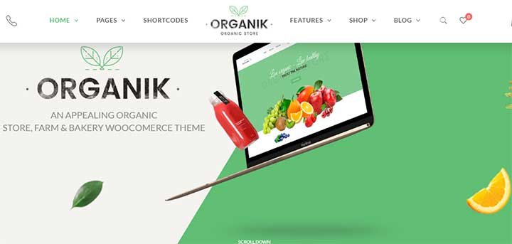 Organik Organic Food Store WordPress Theme