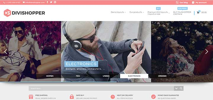 Divi Electronics Layout