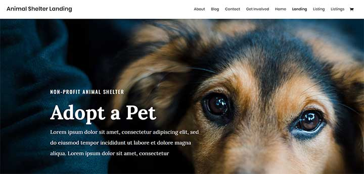 Divi-Pet-Layout