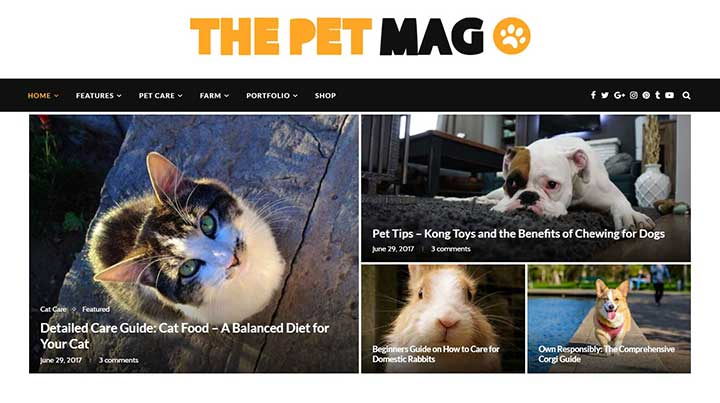 Soledad WordPress Pet theme