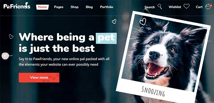 PawFriends Pet Shop and Veterinary Theme