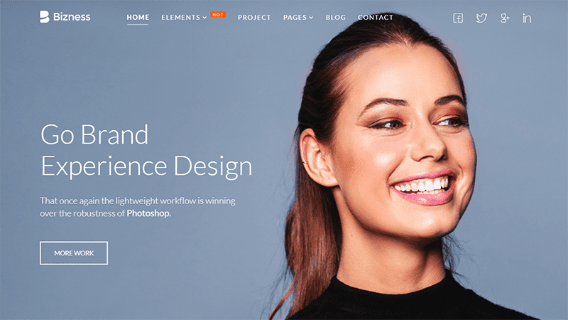 Bizness Consultant WordPress Themes