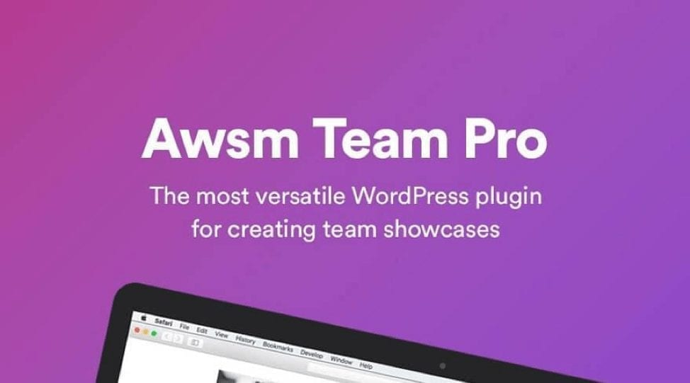 WordPress Team Pro