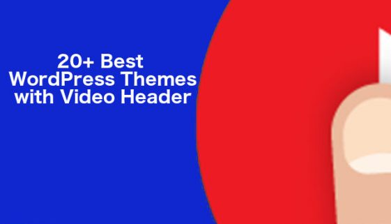 Best WordPress Theme with Video Header